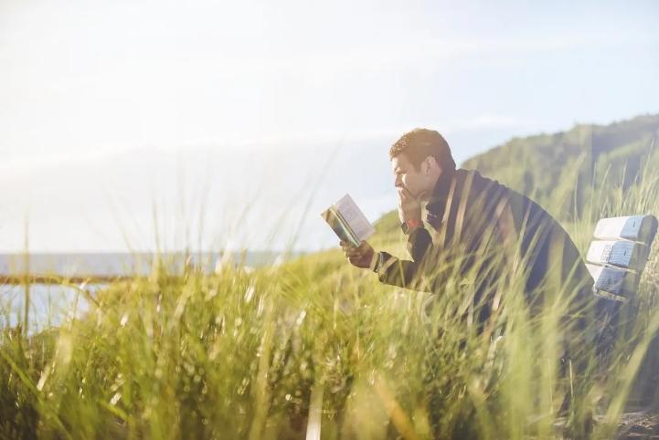 """小说是""""小心说话"""",靠灵感、技艺和体力避免坠入平庸的巢穴"""