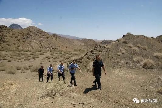 吐鲁番警方破获非法狩猎案件 扣押新疆岩蜥281只