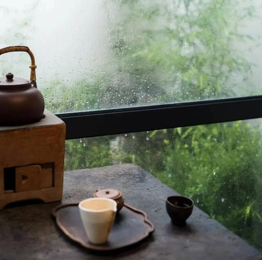 贾平凹:茶事