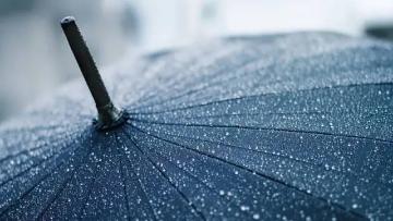 池莉:晤雨