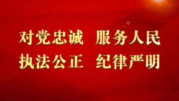 天津公安机关迅速传达学习习近平总书记向中国人民警察队伍授旗时重要训词精神